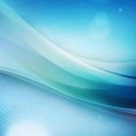 不妊鍼灸ネットワーク第4回公開講座